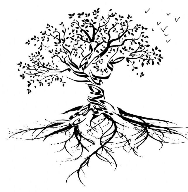 Homenaje raíces de TOPI